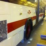 paintedttcbus